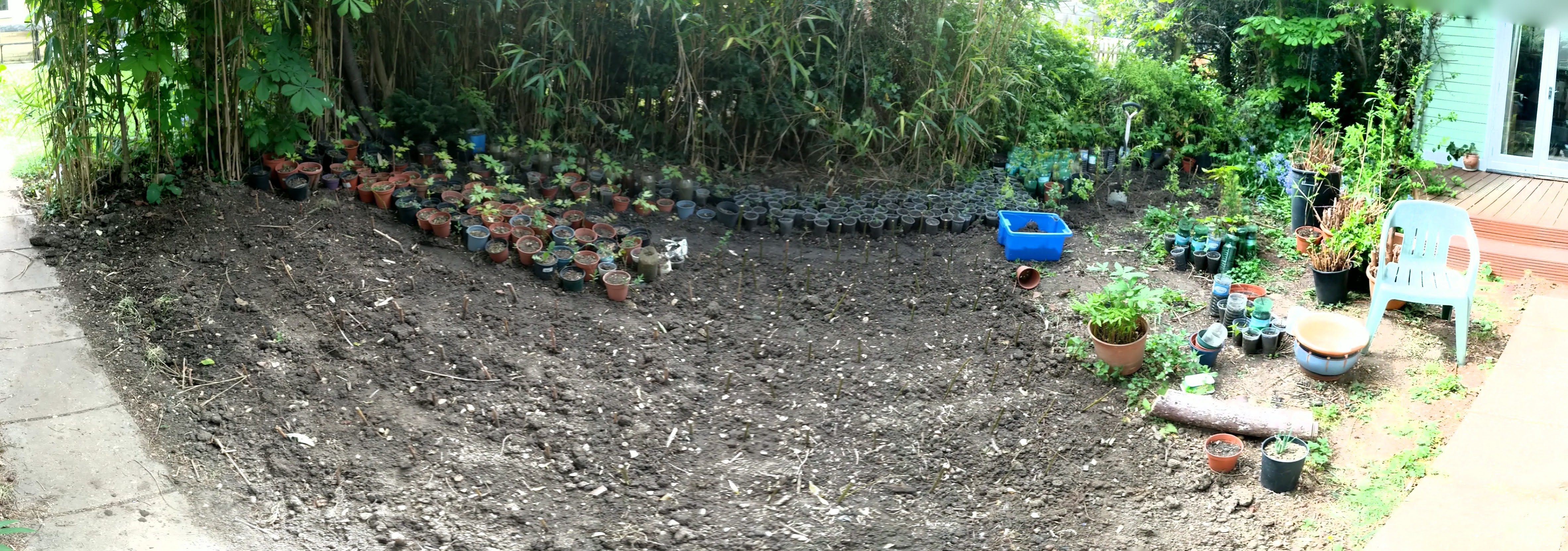 panoramic view of 8m by 4m plot, the bottom path is straight